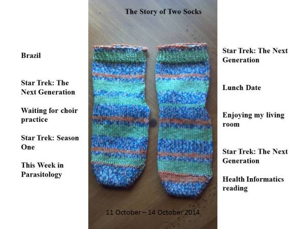 Lady Bug Socks2